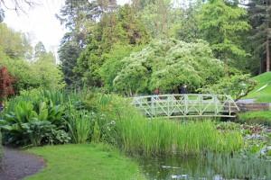 botanic_gardens_07